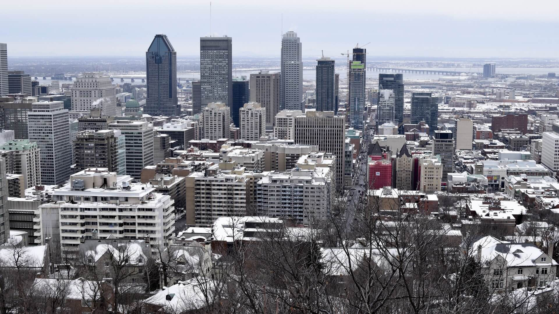 QUEBEC IMMOBILIERS COURTIERS ASSOCIATION